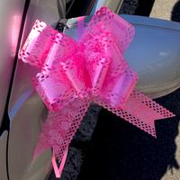 Lot 10 nœuds papillon automatiques pour décoration voiture mariage DNM1 Rose
