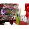 100 emballage cellophane roses en bois ou brins de muguet 1er Mai CLO7