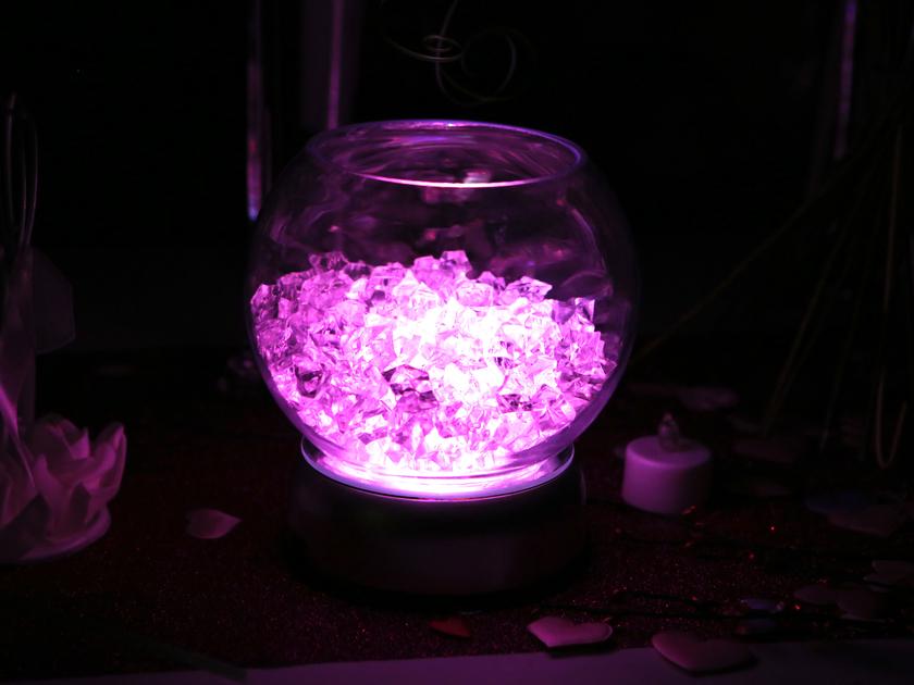 Bocal ou aquarium plante aquatique jetez vous 224 l eau for Bocal aquarium
