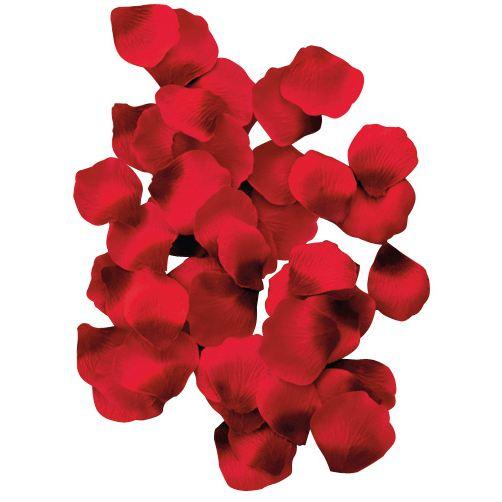 100 petales de rose couleur - Canon Petale De Rose Mariage