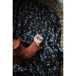 Couverture  bébé snap the moment 100% coton Bloom