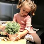 pot de semis  avec pelle scrunch - Copie