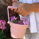 pot de semis rose  avec pelle scrunch
