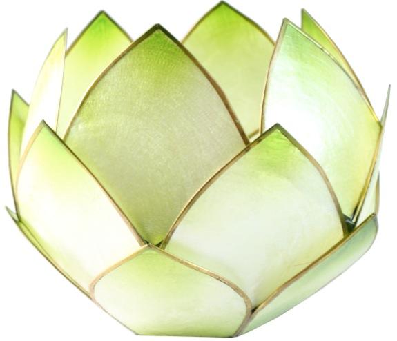 Lotus Crépuscule - Vert Lime