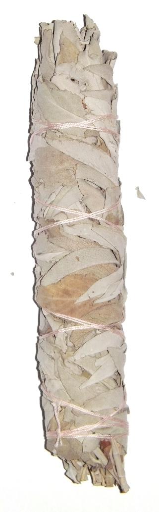 Sauge blanche Bâton purificateur - Salvia Apiana ( 22 cm )