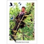 Tarot Gaïen ( Coffret 78 cartes + Livret 288 pages )  32497 (2)
