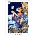 Tarot Gaïen ( Coffret 78 cartes + Livret 288 pages )  32497 (5)