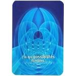 La Loi de La Résonance ( Livret + 49 cartes )  55256 (2)