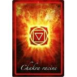 L Oracle des Chakras - Coffret ( Livret et 49 Cartes )  39498 (2)