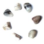 Opale blanche d'inde roulée (1)
