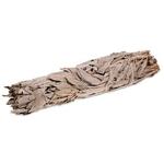 Sauge Blanche Grand Bâton Purificateur - Salvia Apiana (23 cm)