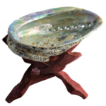 support-bois-trepied-coquille-d-ormeau-abalone-boule-bol-chantant