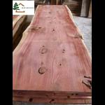 plateau sequoia live edge structuré ss221
