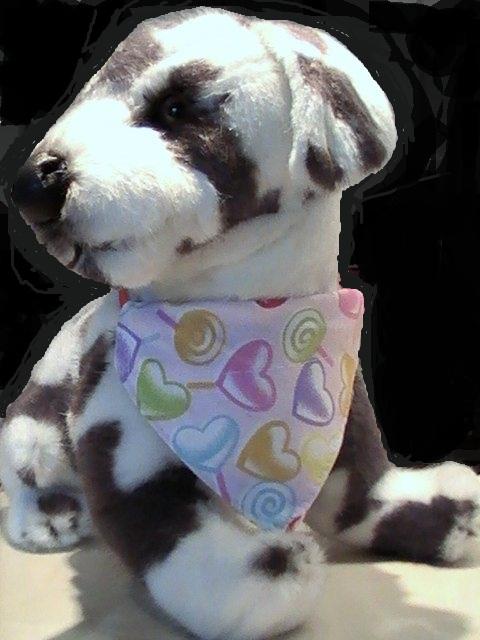 bandana pour chien bandana pour chien coeurs multicolores. Black Bedroom Furniture Sets. Home Design Ideas