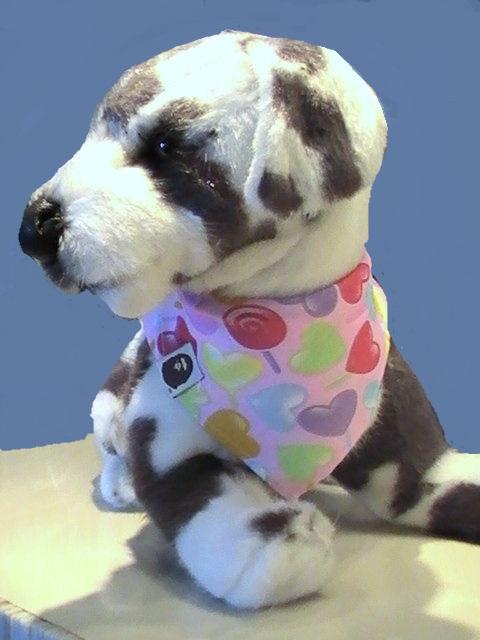 bandana pour chien bandana coeurs pour chien echarpe chien. Black Bedroom Furniture Sets. Home Design Ideas