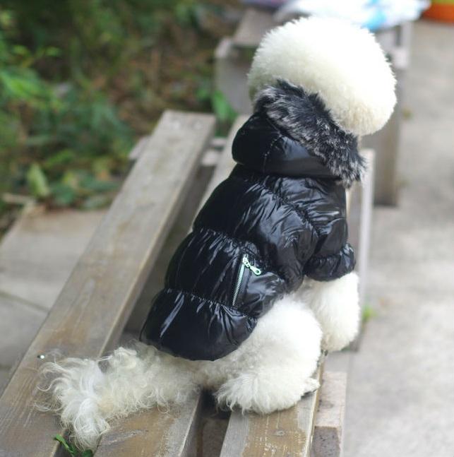manteau pour chien doudoune noire pour petit chien manteau. Black Bedroom Furniture Sets. Home Design Ideas