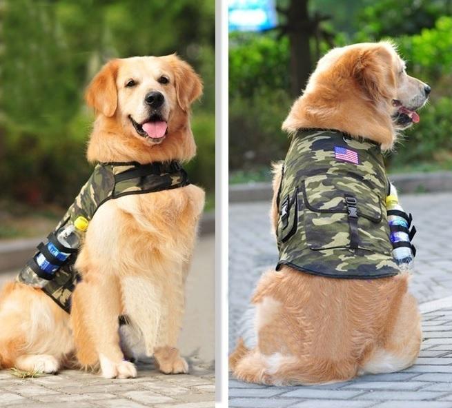 harnais pour chien harnais camouflage pour chien. Black Bedroom Furniture Sets. Home Design Ideas