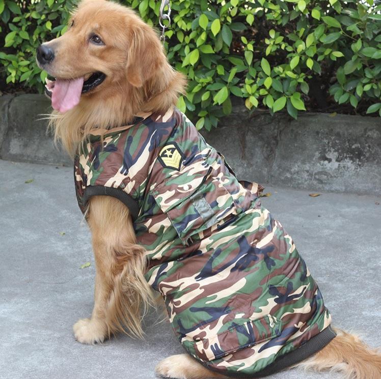 Manteau camouflage pour grand chien manteau pour chien for Piscine pour grand chien