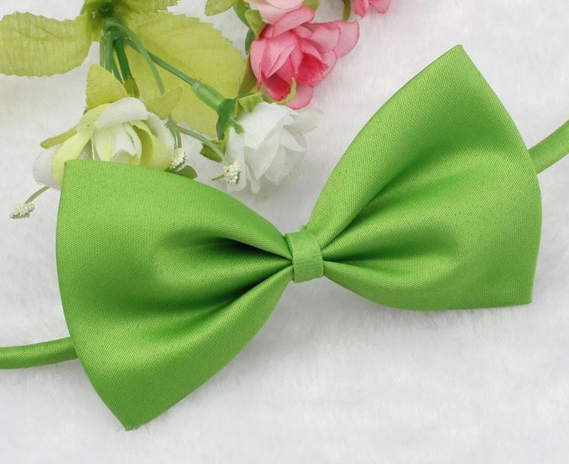 noeud papillon vert pour chien cravate pour chien. Black Bedroom Furniture Sets. Home Design Ideas