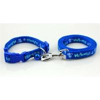 COLLIER ET LAISSE POUR CHIEN collier et laisse en nylon bleu pour chien