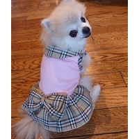 ROBE POUR CHIEN robe pour chien Chihuahua
