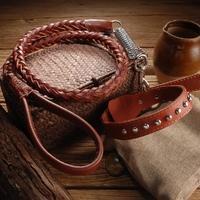COLLIER ET LAISSE POUR CHIEN collier marron avec rivets pour chien