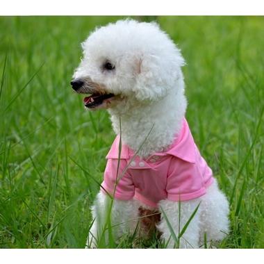 t-shirt pour chien rose