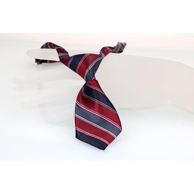 cravate rayee pour chien 1