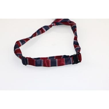 cravate rayee pour chien 3