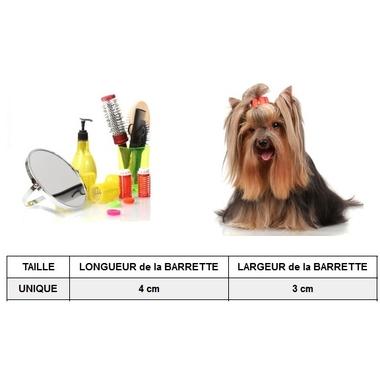 barrette pour chien 4x3 cm