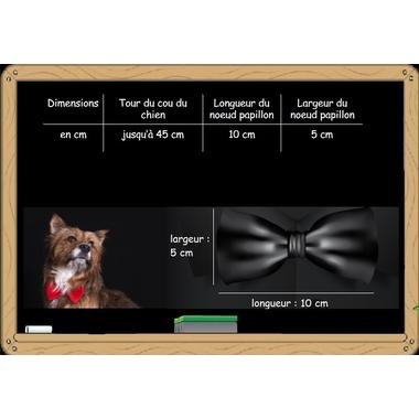 noeud papillon pour chien 10x5x45
