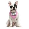 Bandana pour chien dont le Tour de cou est compris entre 14 cm et 34 cm