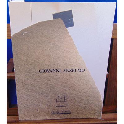 Collectif  : Giovanni Anselmo. Musée d'art contemporain Lyon...