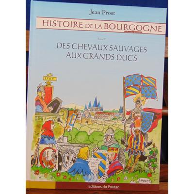 Prost Jean : Histoire de la Bourgogne, Tome 1 : Des Chevaux Sauvages aux Grands Ducs...