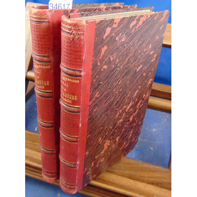 Chateaubriand  : essai sur la littérature anglaise et considérations sur le génie des hommes, des temps et des