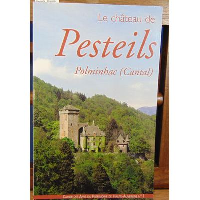 : Le château de Pesteils : Histoire, architecture et décoration (Cahier des Amis du patrimoine de Haute-Auve