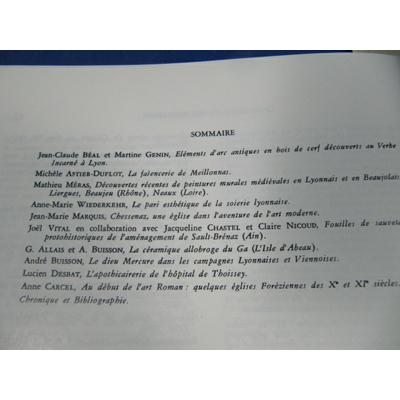 collectif : Cahiers René de Lucinge N° 3 de 1987 art et archéologie en rhone alpes...