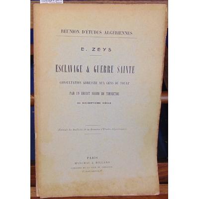 Zeys  : Esclavage & guerre sainte. Consultation adressée au gens du Touat apr un érudit nègre de Timboctou au