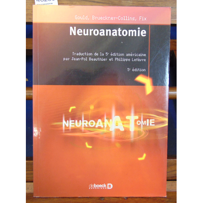 Fix  : Neuroanatomie...