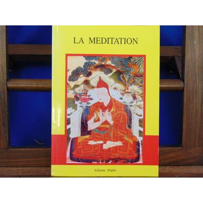 Dharma  : La méditation...
