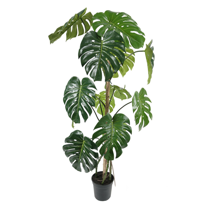 Plante monstera artificielle