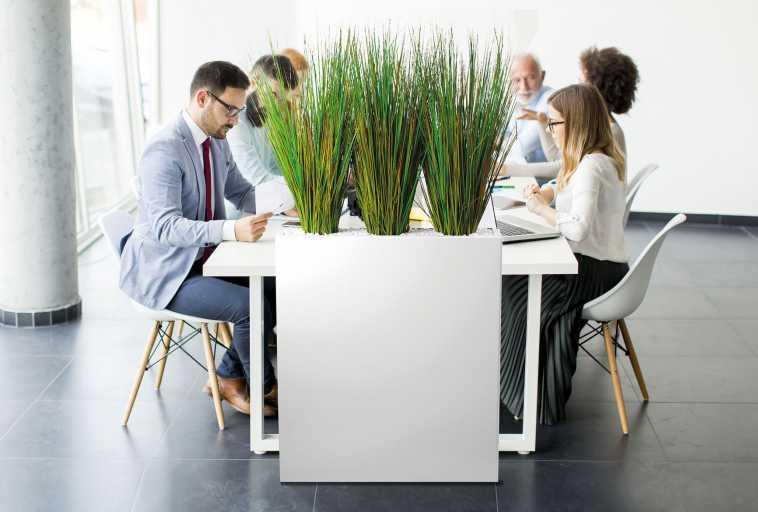 Séparateur open space en plantes artificielles cloison végétale