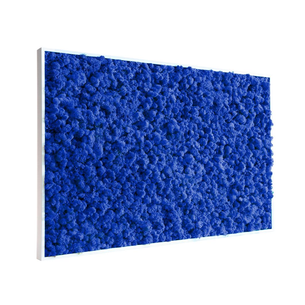 Tableau végétal en lichen bleu