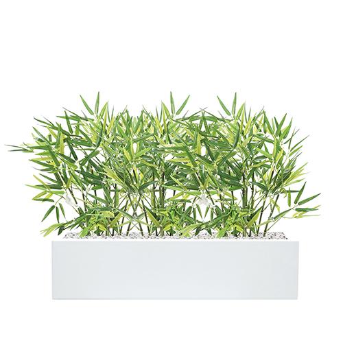 (Roma-Basse-[Blanc])-(Bambou-Artificiel)