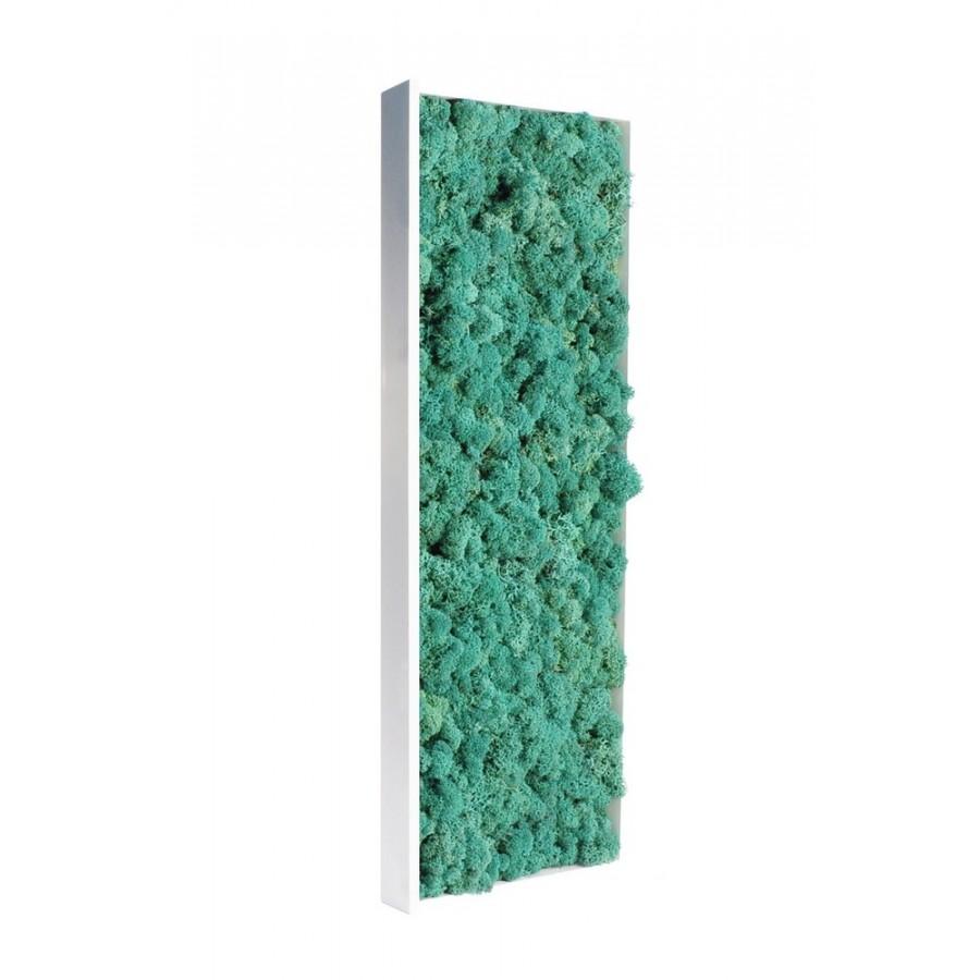 tableau de lichen stabilis bleu vert. Black Bedroom Furniture Sets. Home Design Ideas