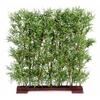 haie-de-bambou-oriental-semi-naturelle