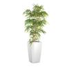bambou_bureau_semi_naturel_blanc