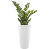 plantes de bureau en pot blanc semi naturelle
