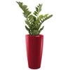 plantes de bureau en pot rouge semi naturelle