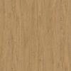 5527 stone oak
